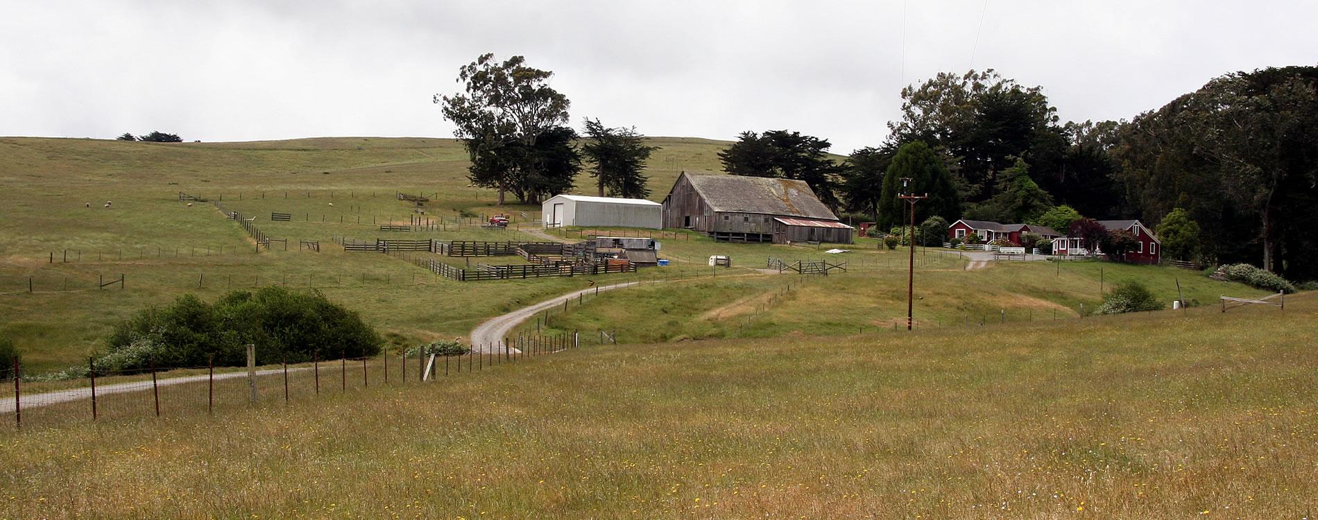 farmlands tomales ca