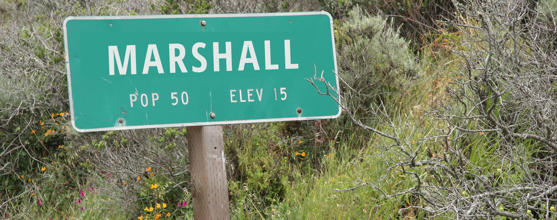 marshall california point reyes national seashore
